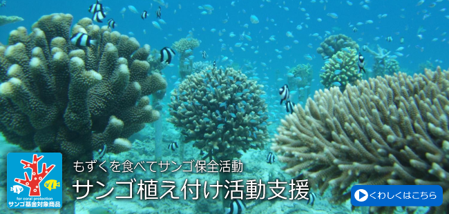 サンゴ基金