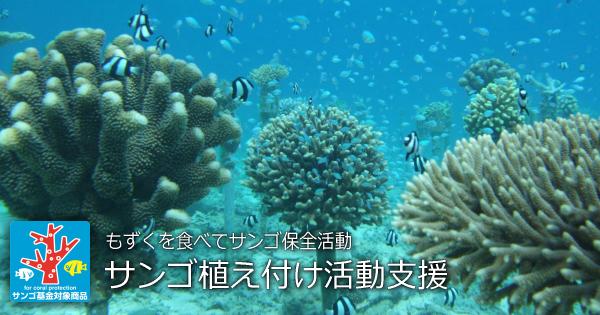 サンゴ基金のとりくみ