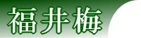 fukui_lg