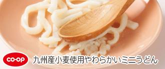 九州産小麦使用やわらかいミニうどん