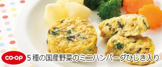 5種の国産野菜のミニハンバーグひじき入り
