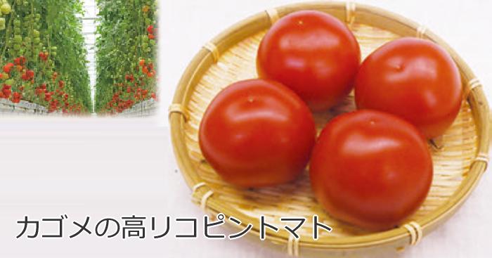 カゴメの高リコピントマト